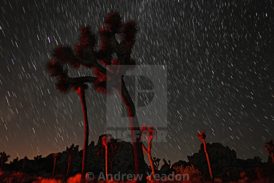 """Star Rain"" stock image"