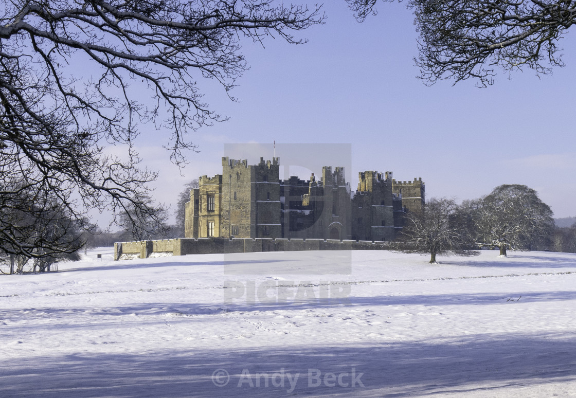 """""""Winter at Raby Castle"""" stock image"""