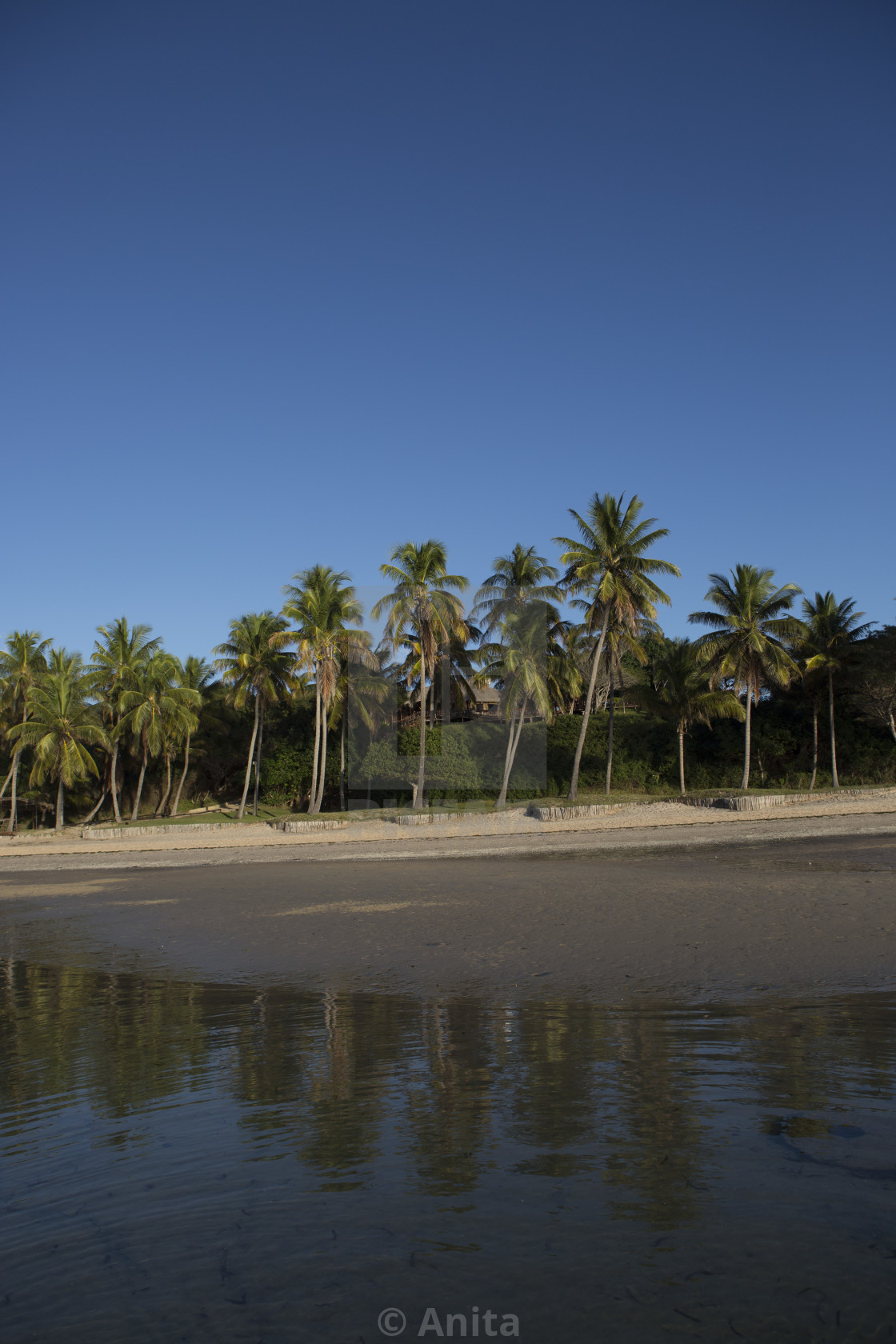 """Shoreline of Mozambique"" stock image"