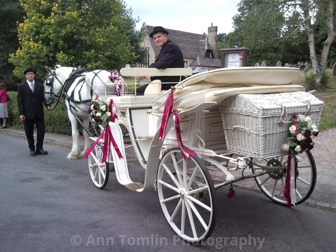 Horse and Carriage Wedding Staffordshire