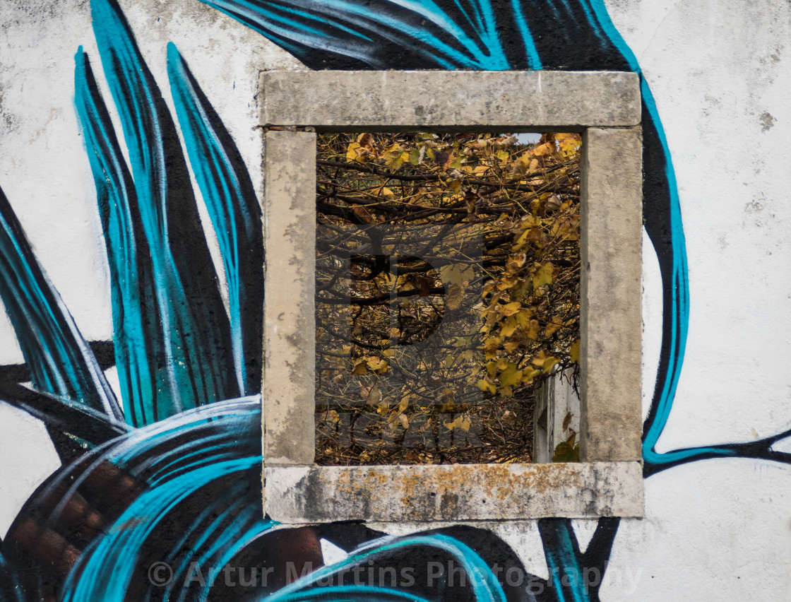 """Fall leaves framed by a stone window"" stock image"