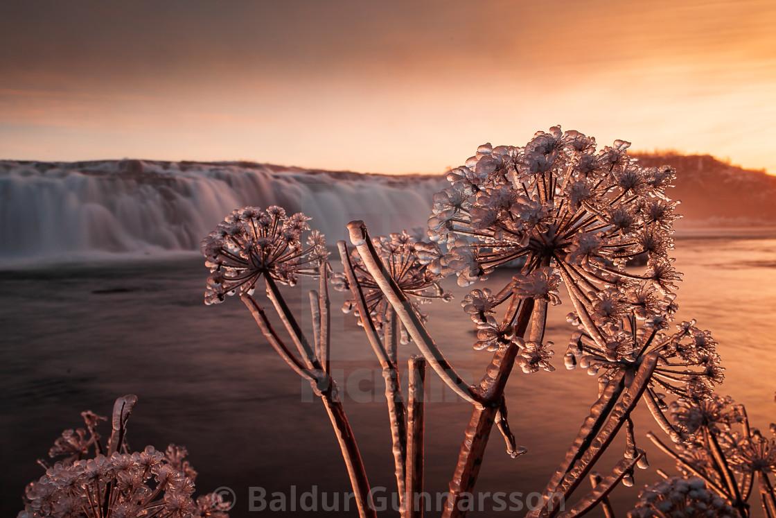 """Winter Wonderland in Iceland"" stock image"