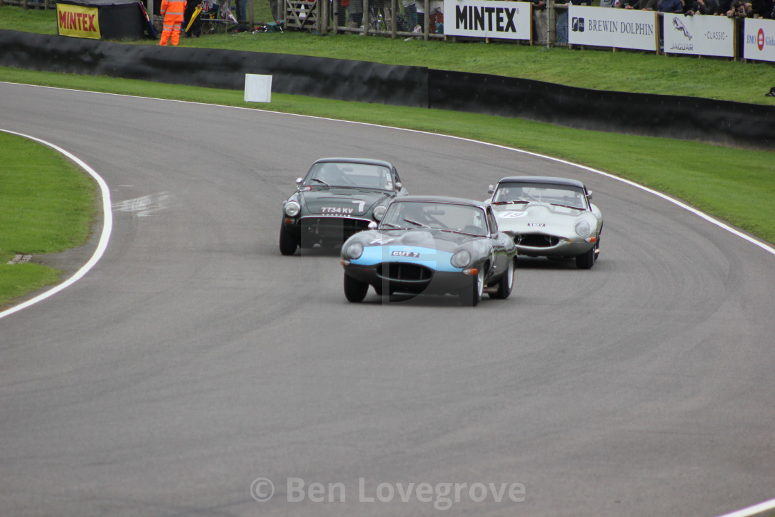 """""""1960s Classic Cars, Goodwood Revival"""" stock image"""