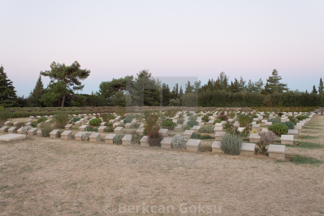 """Lone Pine Commonwealth Cemetery"" stock image"