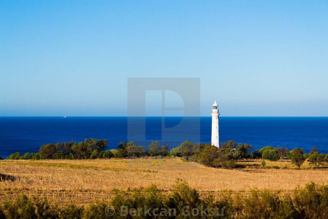 """""""lighthouse on the coast"""" stock image"""