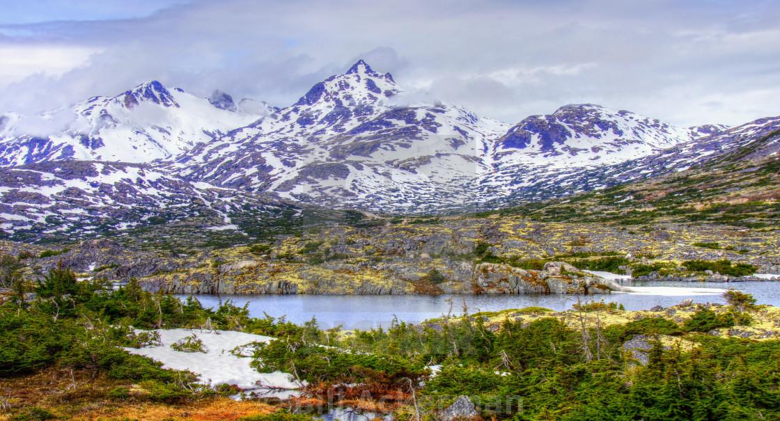 """Near White Pass Summit, Alaska"" stock image"