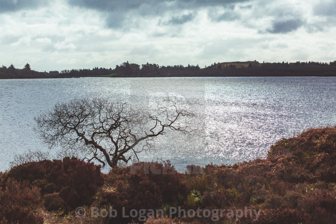 """Lough Fea"" stock image"