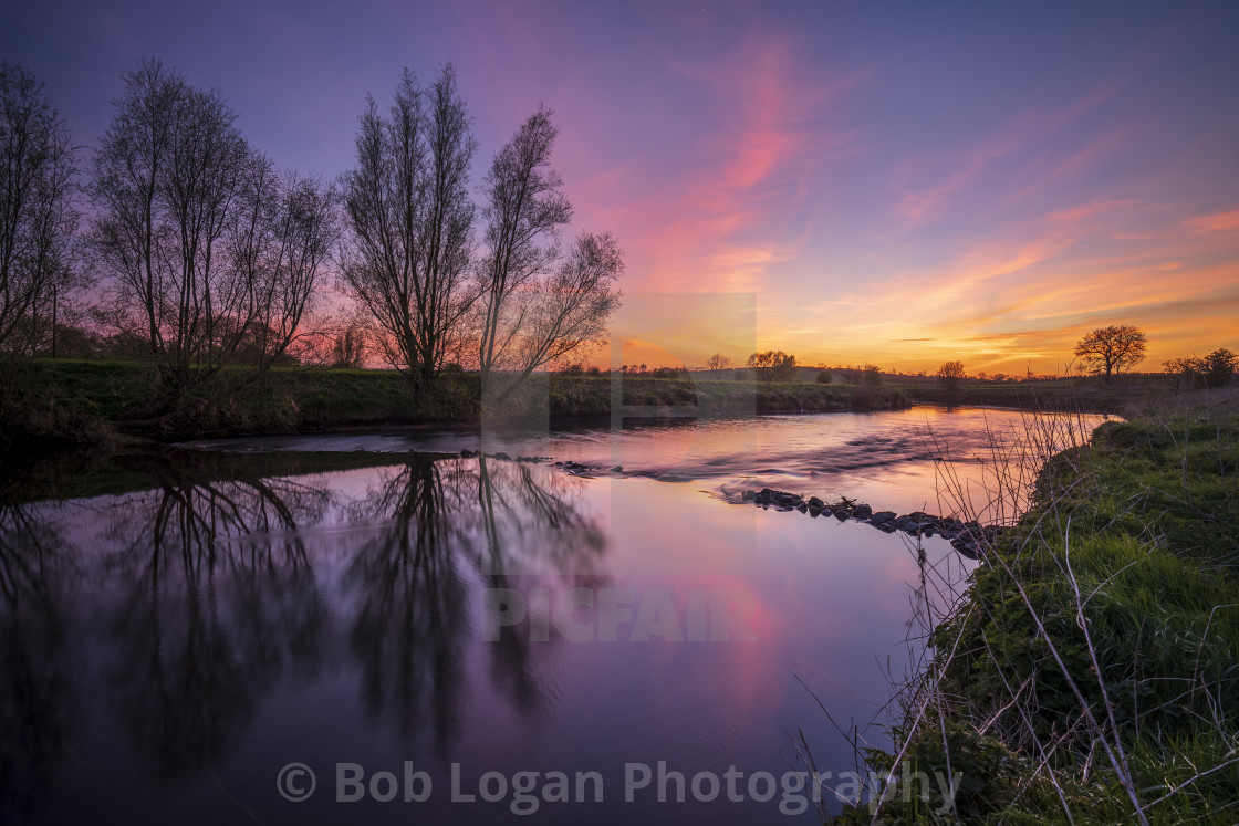 """Sunset Willows"" stock image"