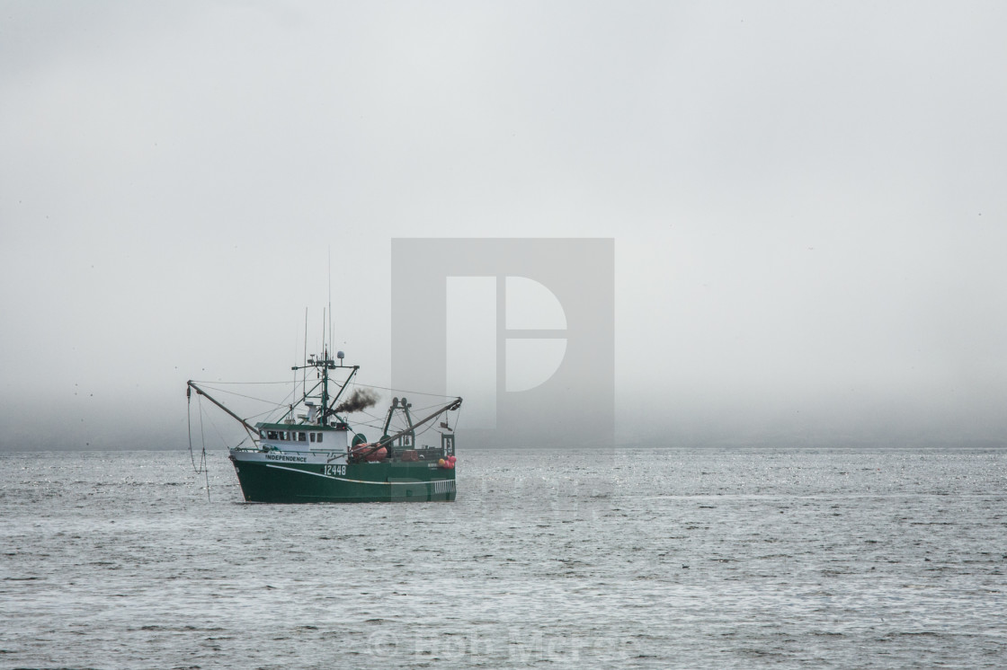 """""""Independence on Witless Bay"""" stock image"""