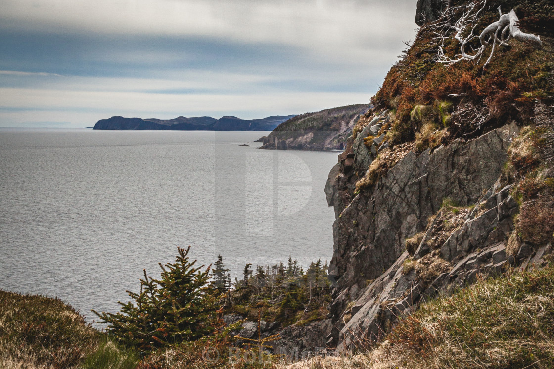 """""""South from Skerwink"""" stock image"""
