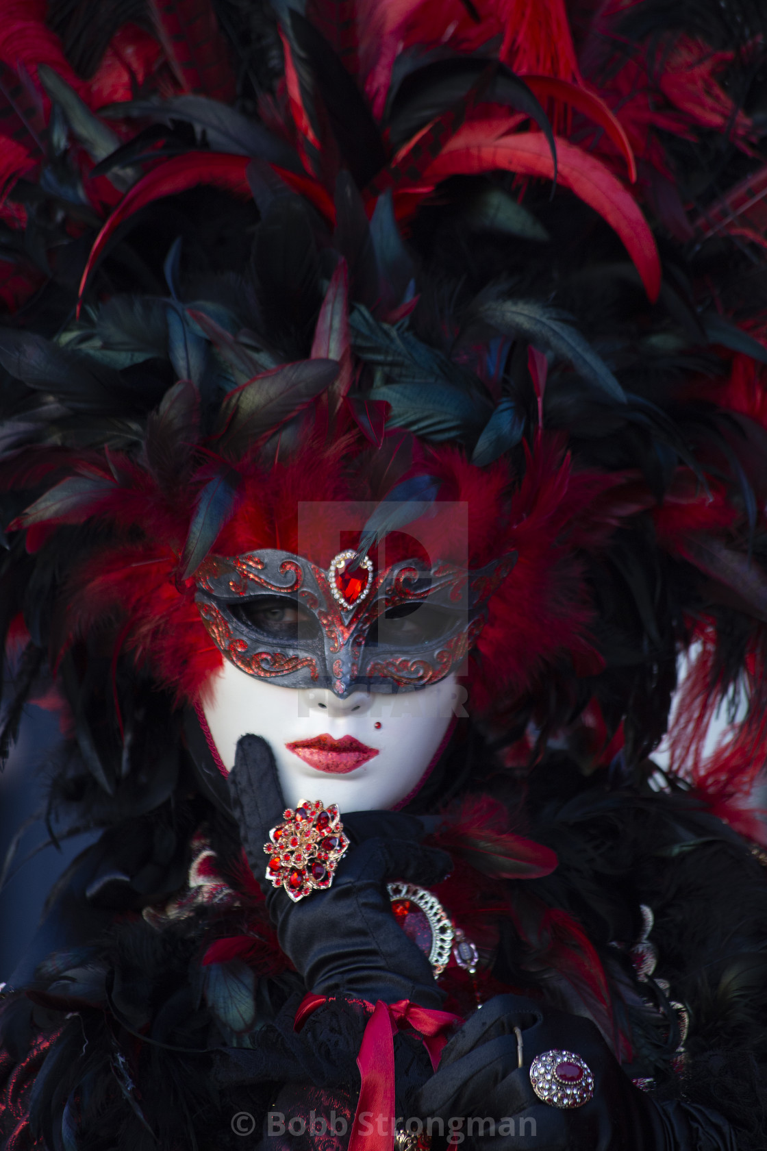 """""""Red and Black Costume at Venice Carnival"""" stock image"""