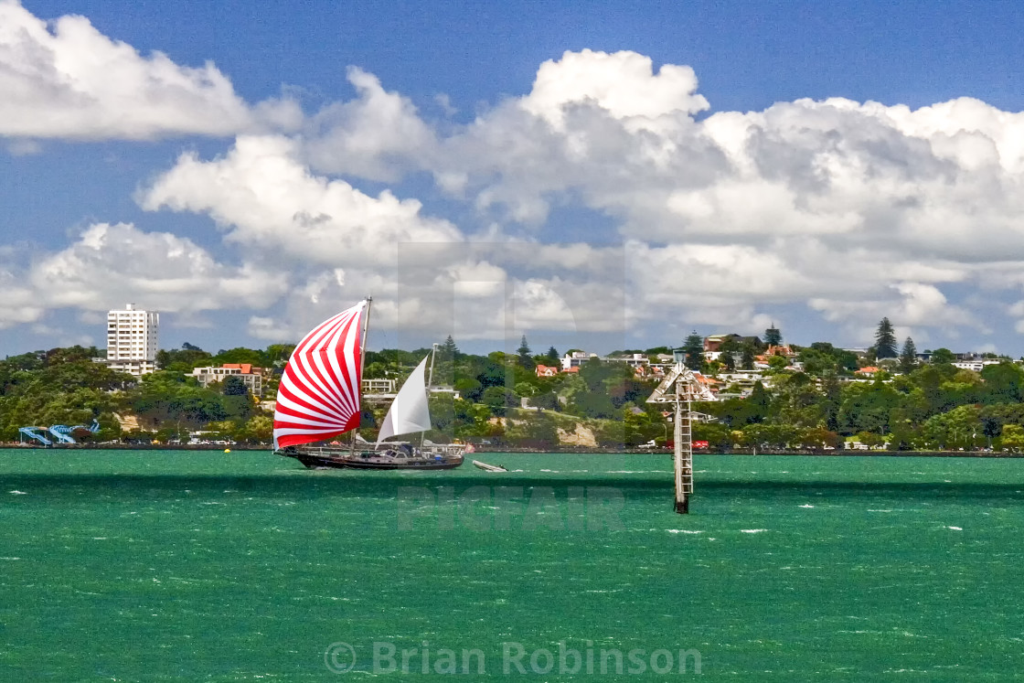 """""""Auckland Harbour"""" stock image"""