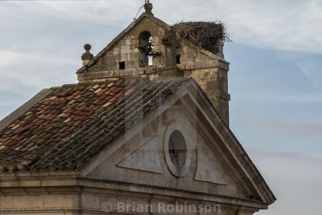 """""""Stork Nest"""" stock image"""