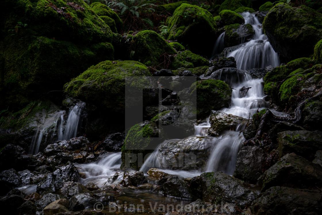 """Cataract Falls Tributary, Marin Co, California, USA"" stock image"