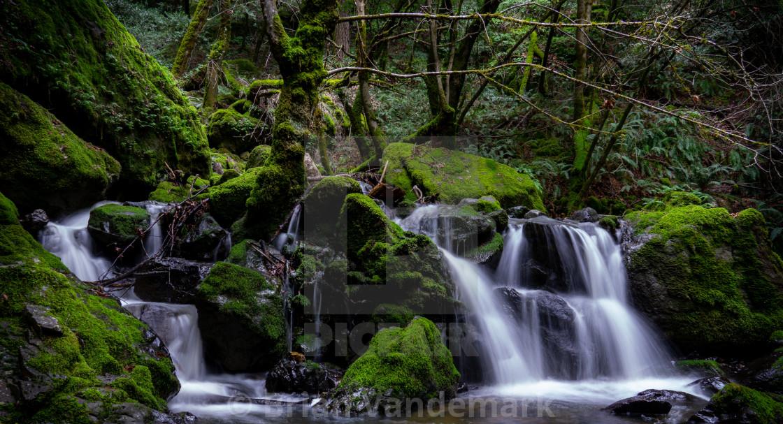 """Cataract Falls, Marin County, California, USA"" stock image"