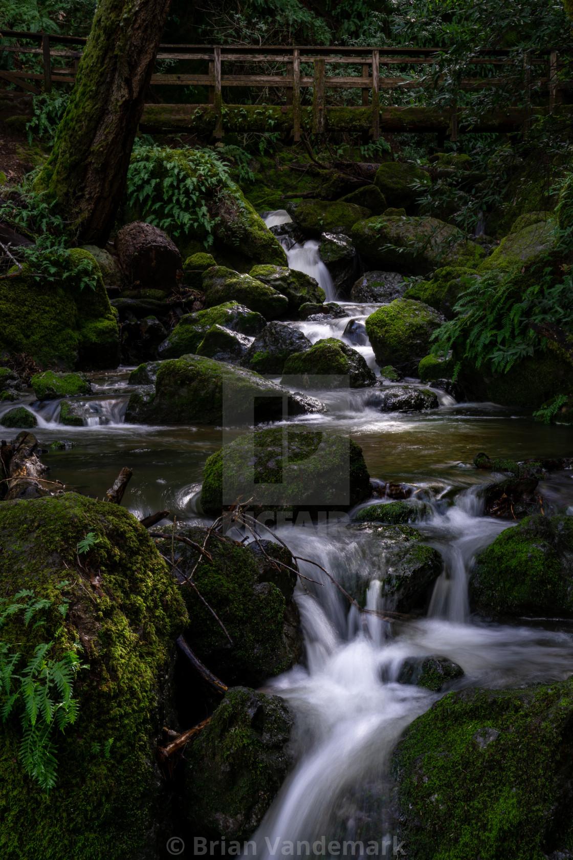 """Bridge over Cataract Creek, Marin County, California, USA"" stock image"