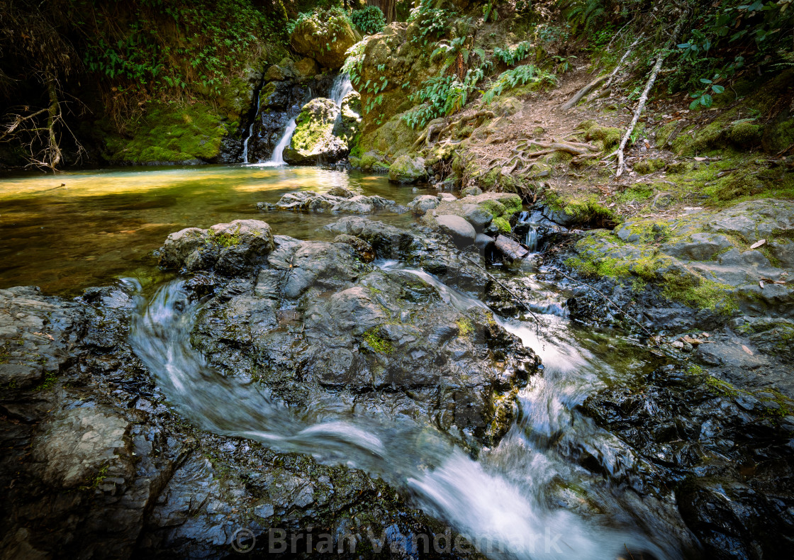 """""""Cataract Creek waterfall with flowing water, ferns, moss, and pool"""" stock image"""