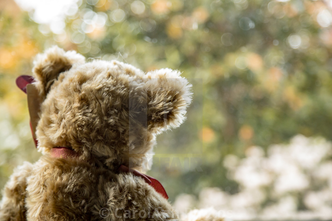 """I can't bear to go outside"" stock image"