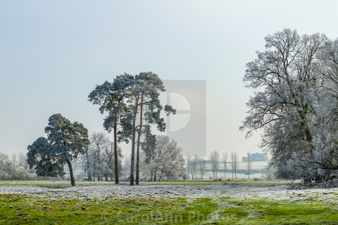 """""""Towcester Water Meadows"""" stock image"""