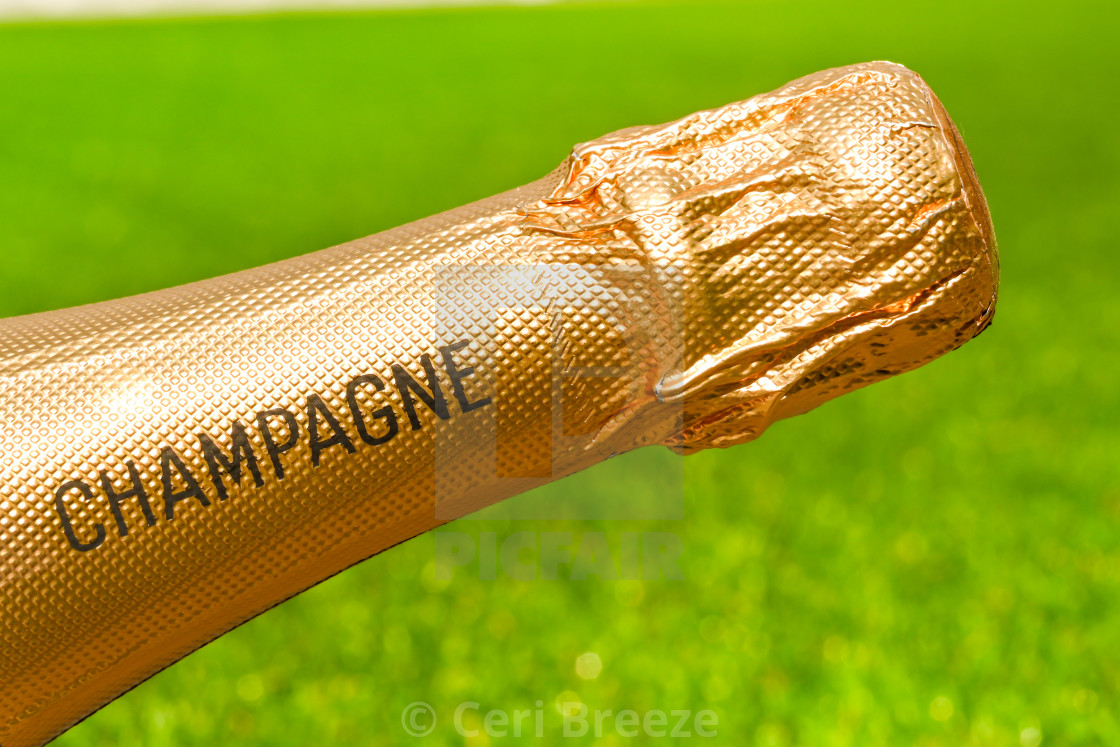 """Gold foil covered neck of an unopened bottle champagne"" stock image"