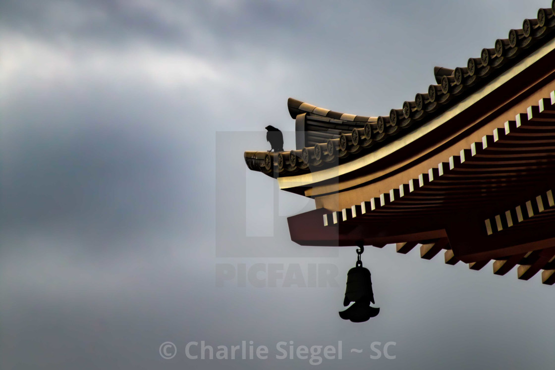 """Crow on the Pagoda at Sensoji Asakusa Kannon Temple, Japan"" stock image"