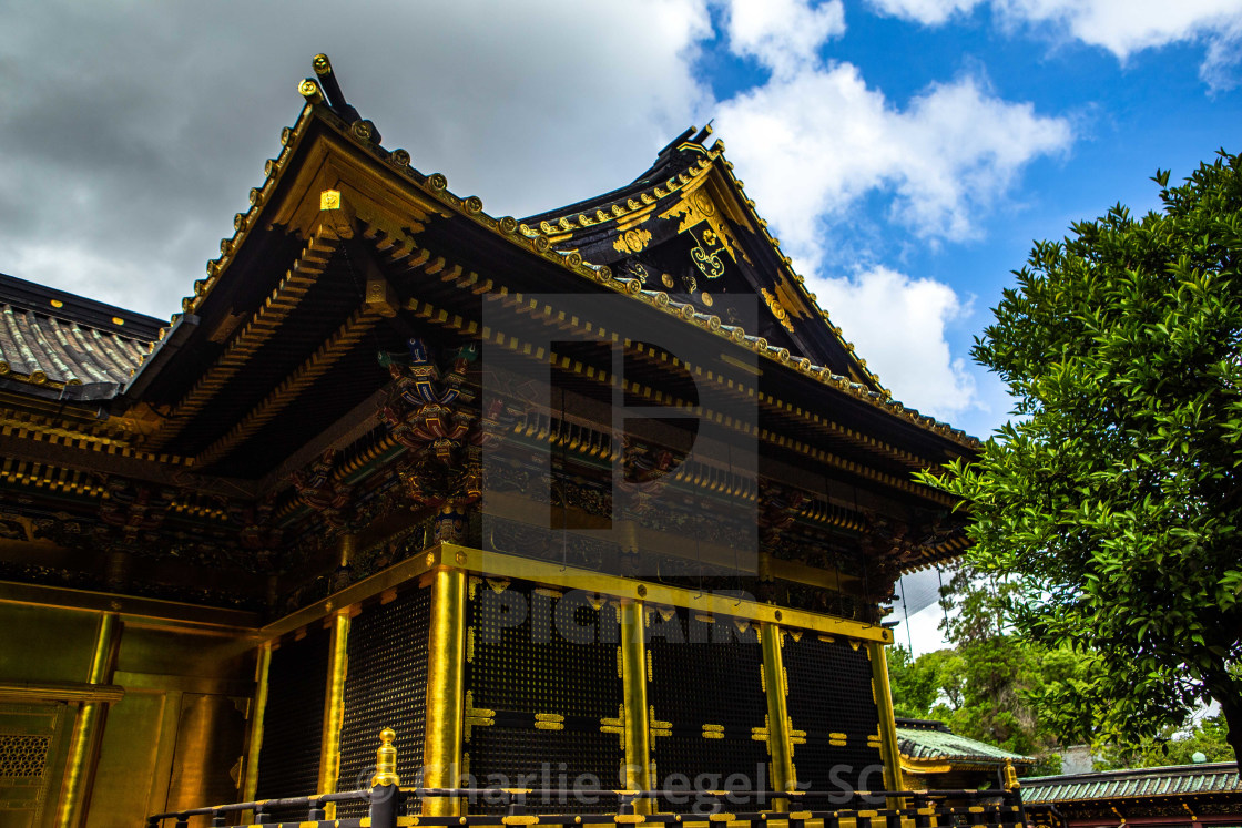 """Ueno Toshogu Shrine, Japan"" stock image"
