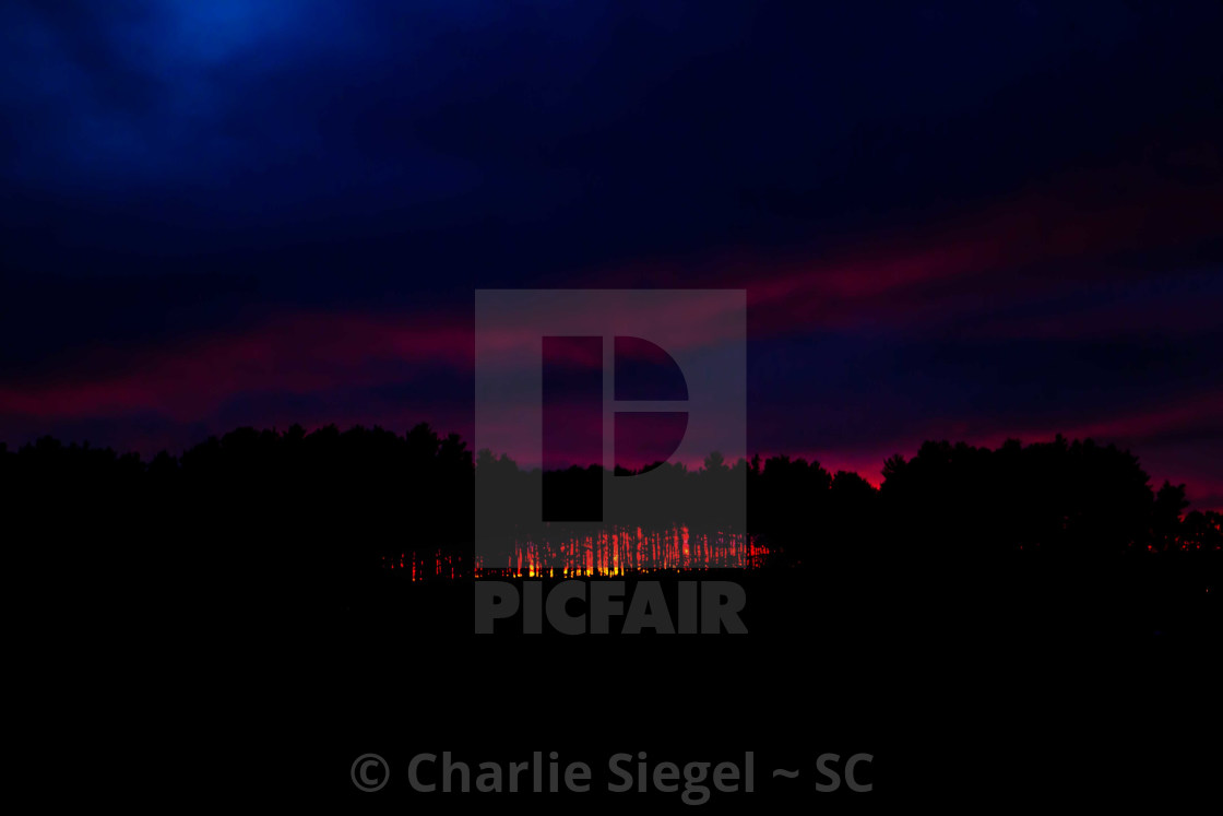 """""""Incredible Sunset behind Trees"""" stock image"""
