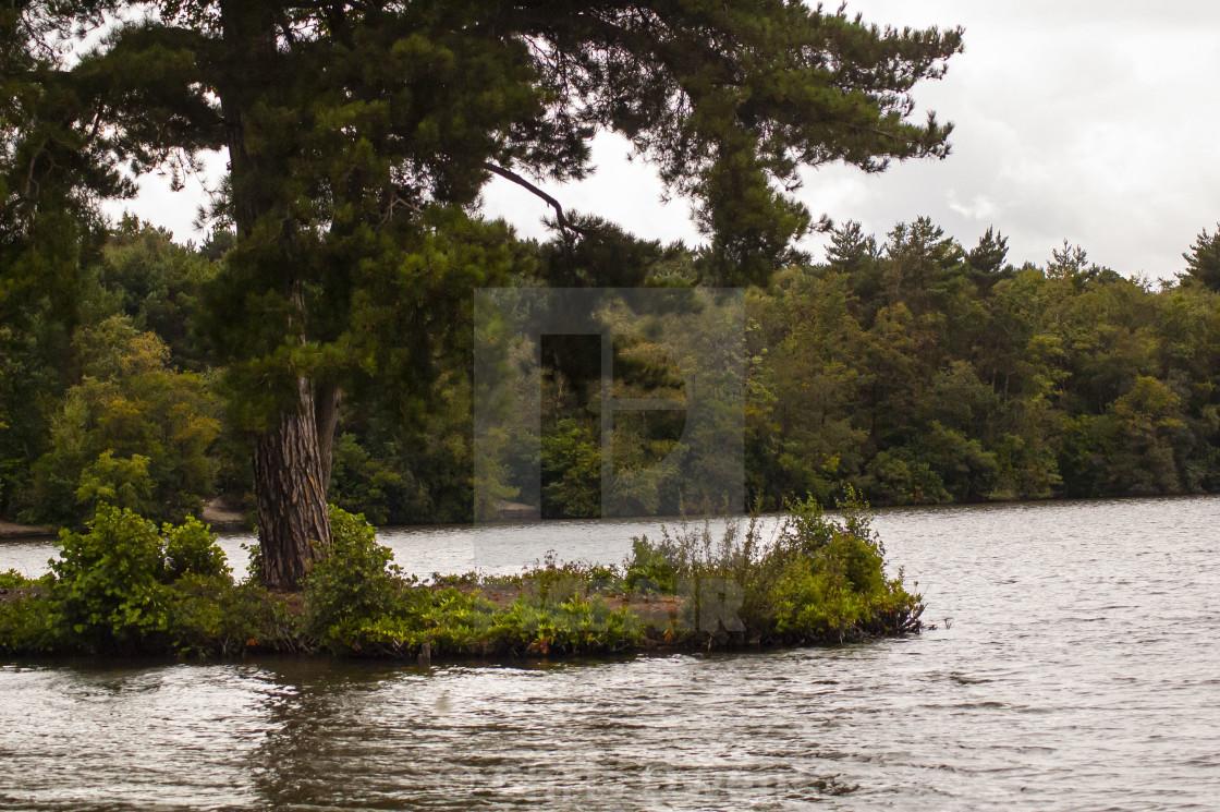 """Island on Hawley Lake"" stock image"