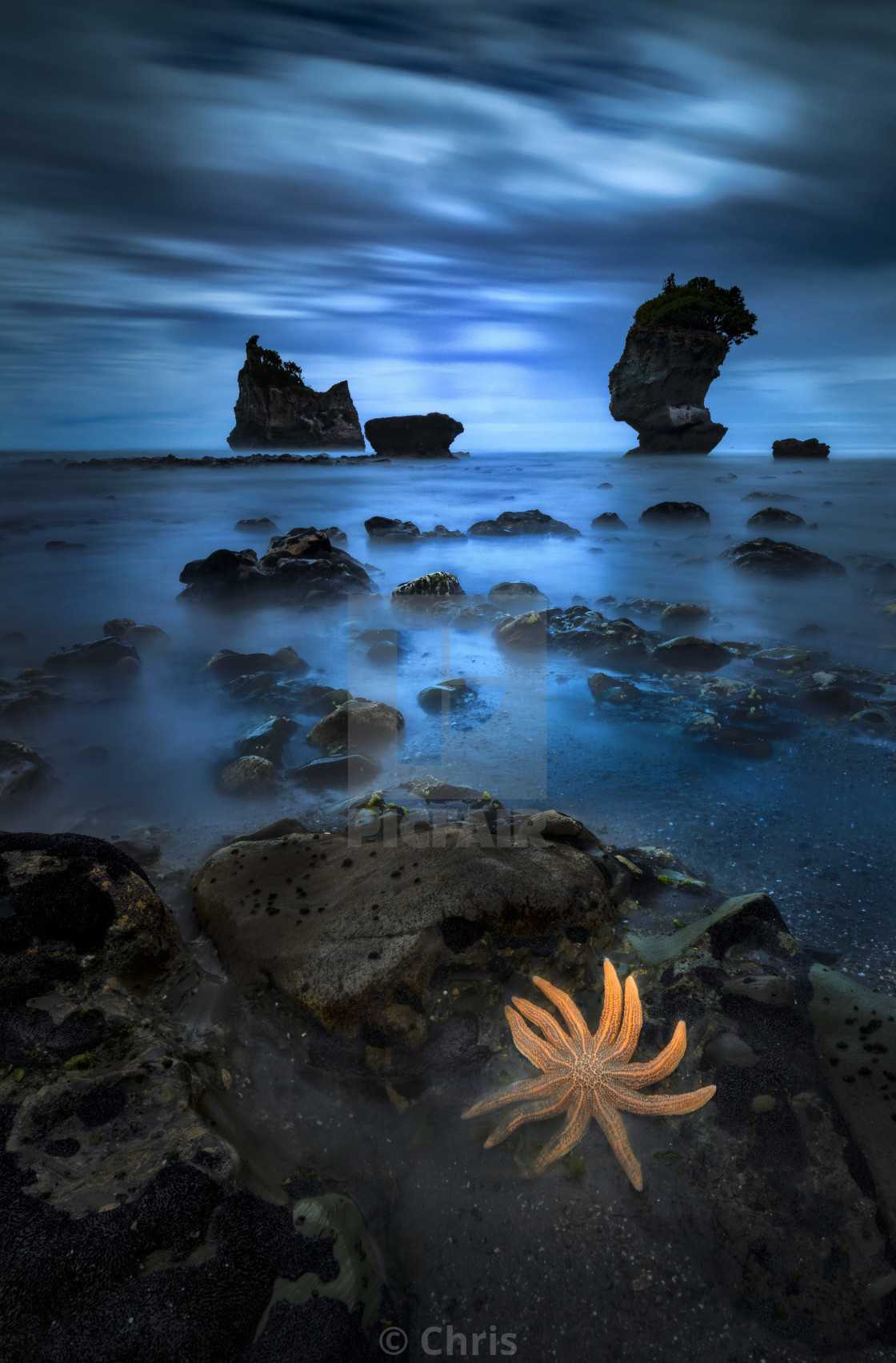 """Starfish seascape photography New Zealand"" stock image"