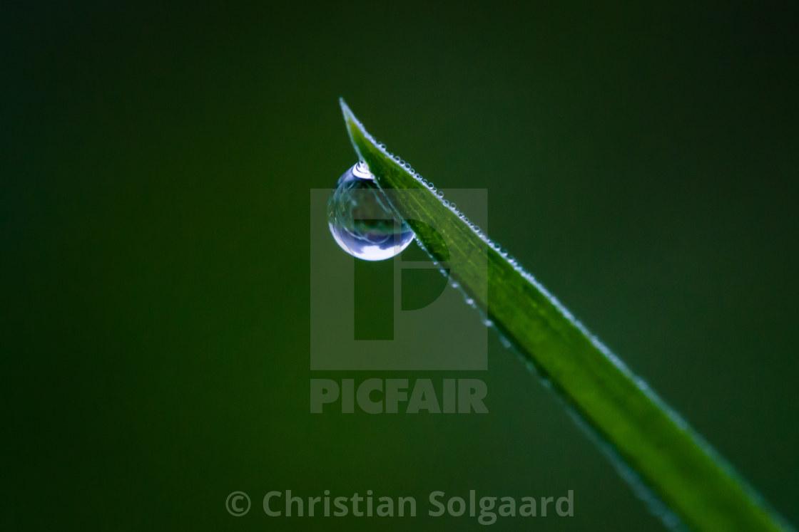 """Drop of water"" stock image"