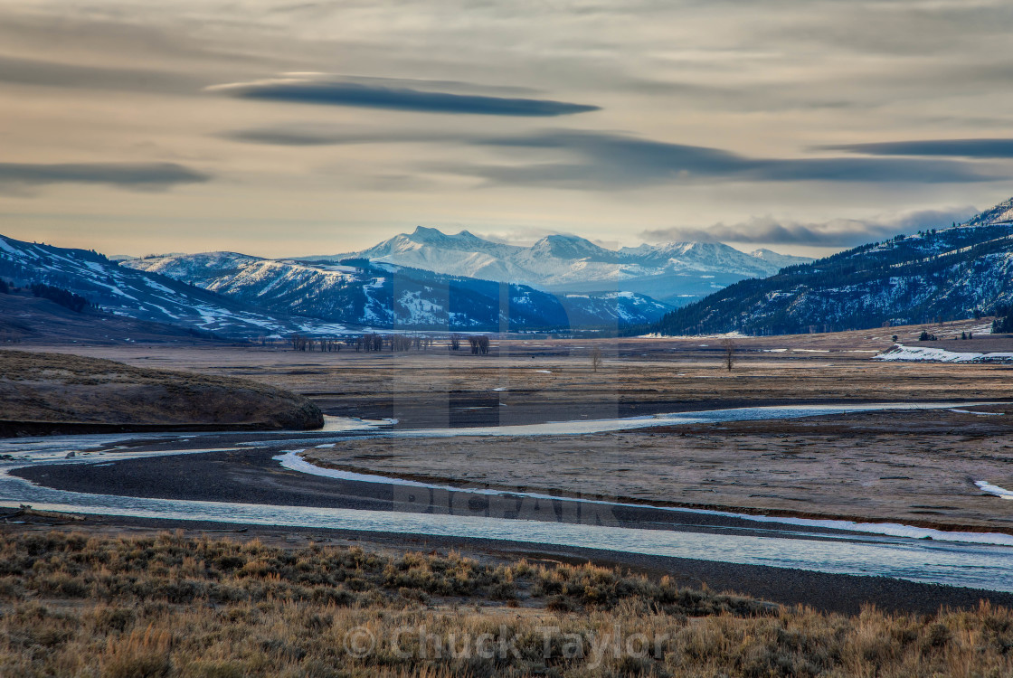 """""""yellowstone national park-landscape-lamar valley-by chuck taylor"""" stock image"""