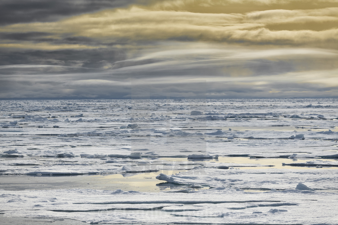 """""""Arctic sea ice"""" stock image"""