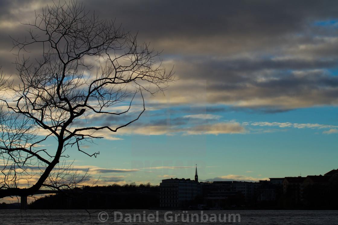 """Tree against blue sky"" stock image"