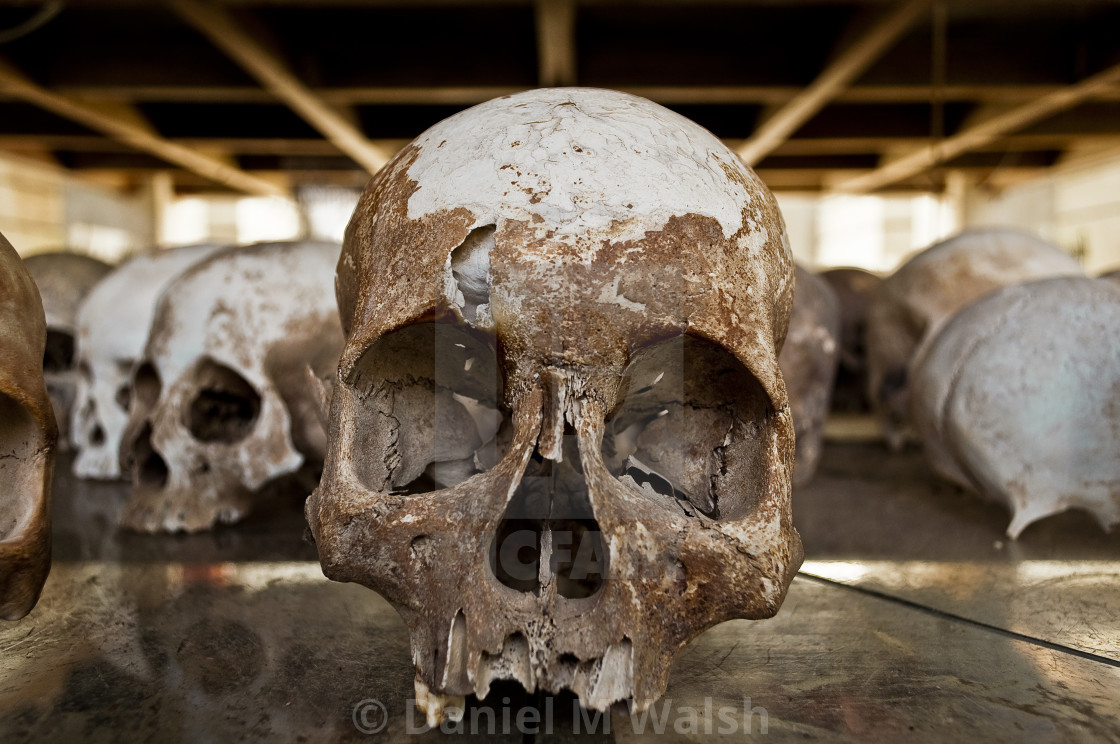 """Skulls of victims from The Killing Fields"" stock image"