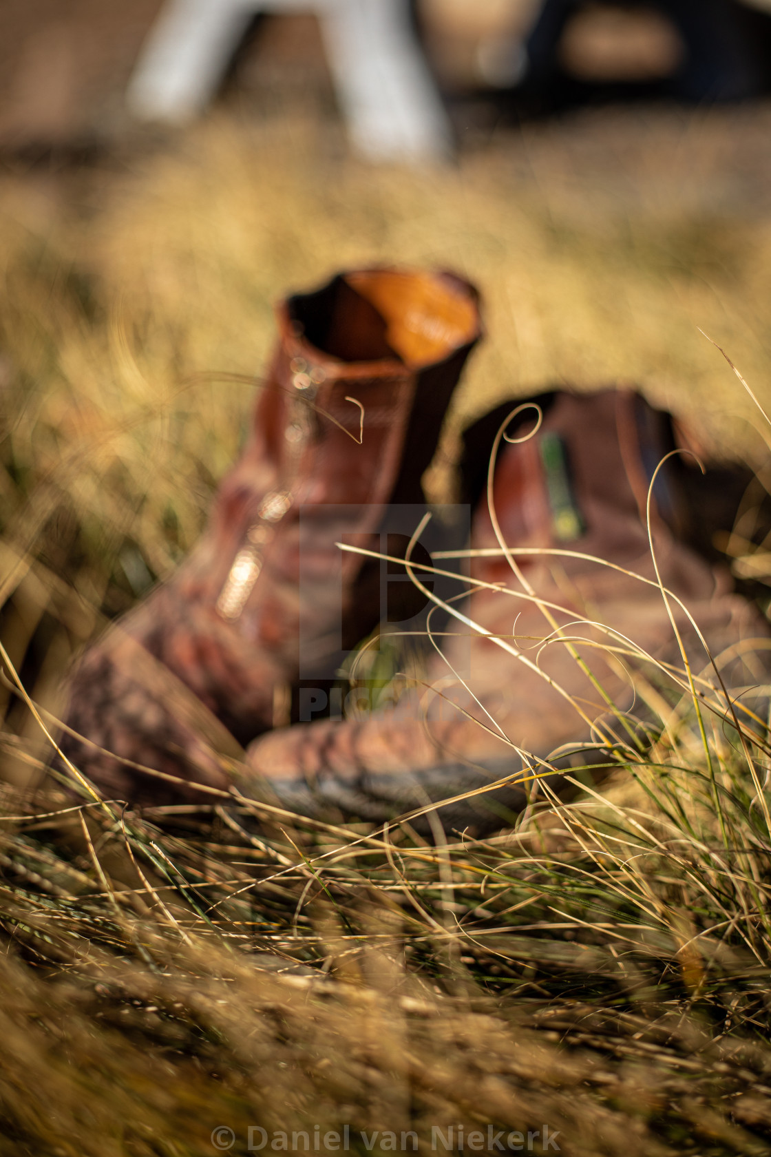 """""""Tattered leather boots"""" stock image"""