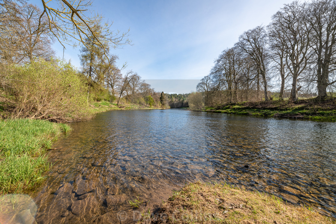 """""""The Teviot near Kelso"""" stock image"""