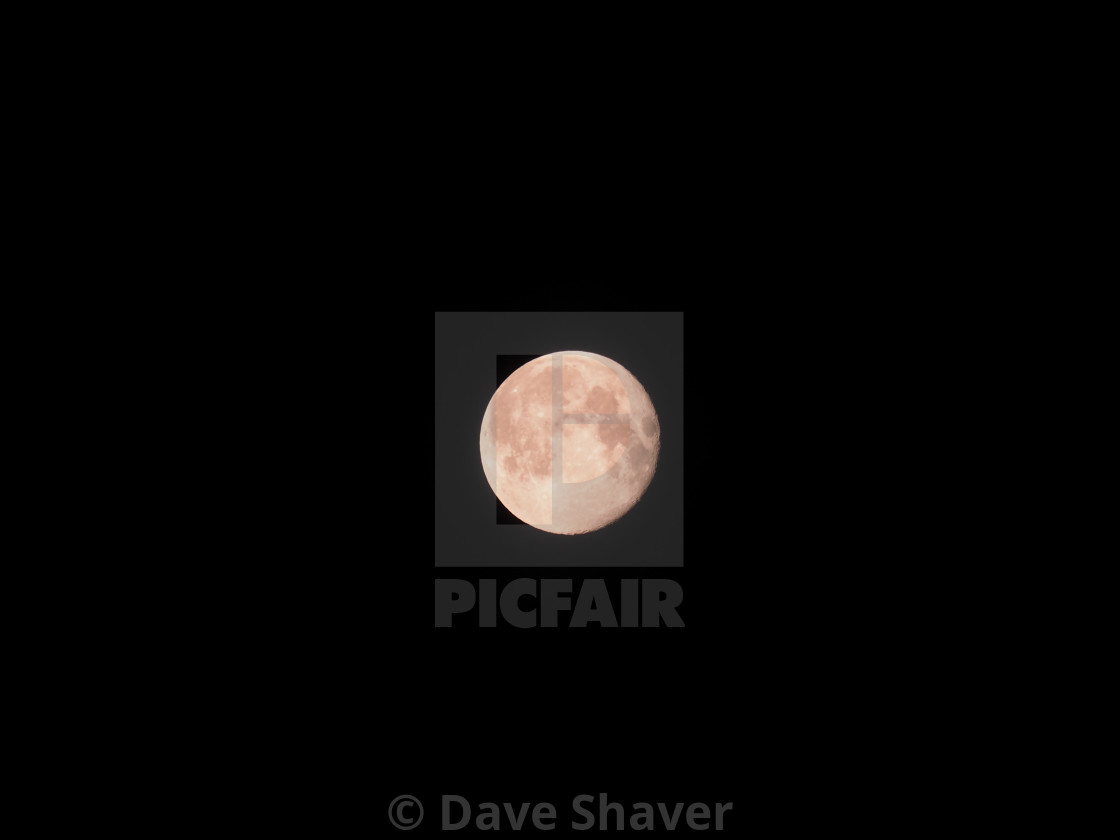 """""""Gay Pink Supermoon"""" stock image"""