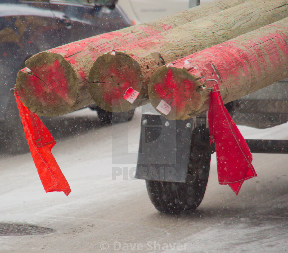 """Three logs sticking off the end of a trailer during a snowfall"" stock image"