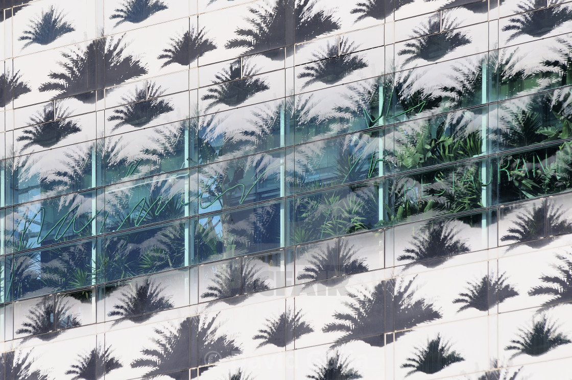 """Glass leaves"" stock image"