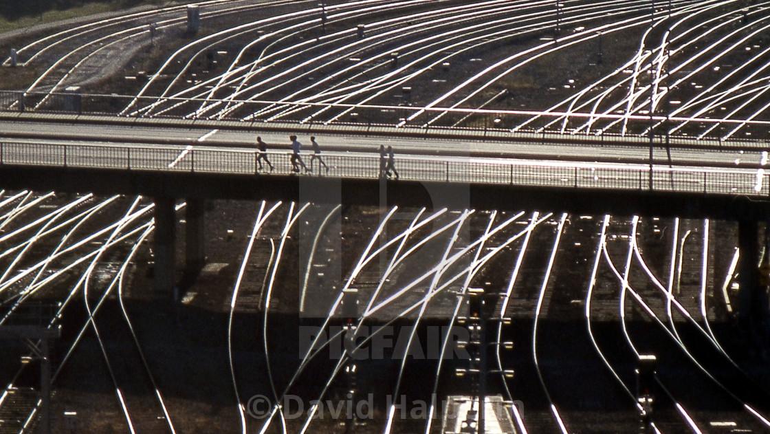 Rails & Bridges