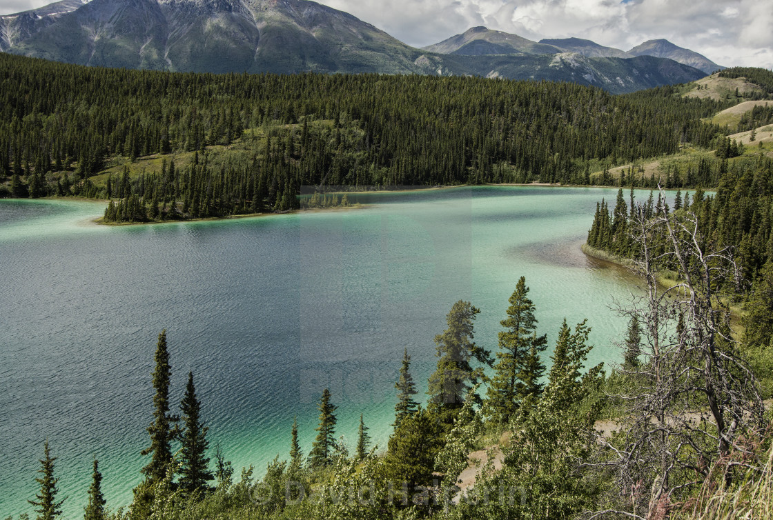 Emerald Lake, Carcross