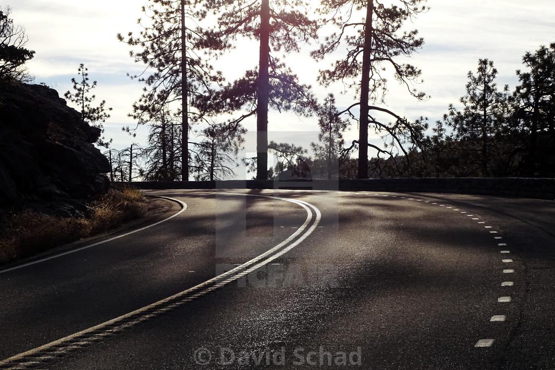"""""""Road in Yosemite NP"""" stock image"""