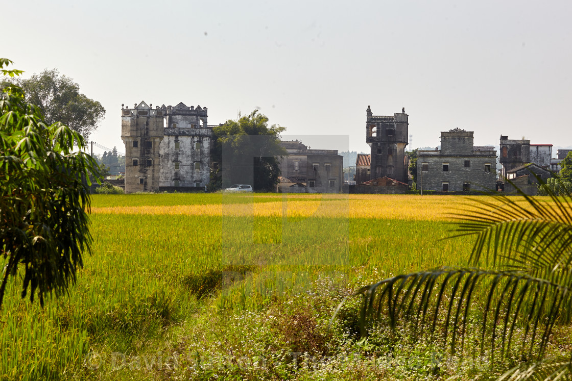 """Agricultural scene Kaiping, Southern China"" stock image"