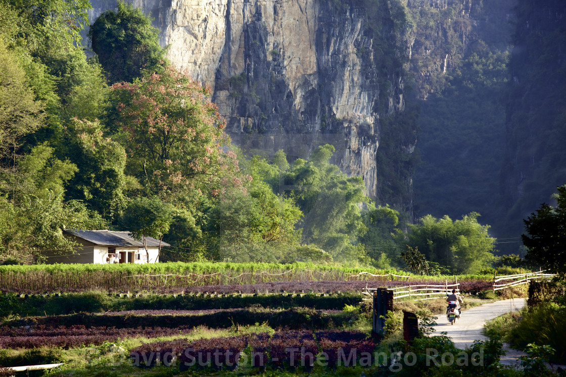 """Rural scene with limestone karst features near Yangshuo, Guilin, China"" stock image"