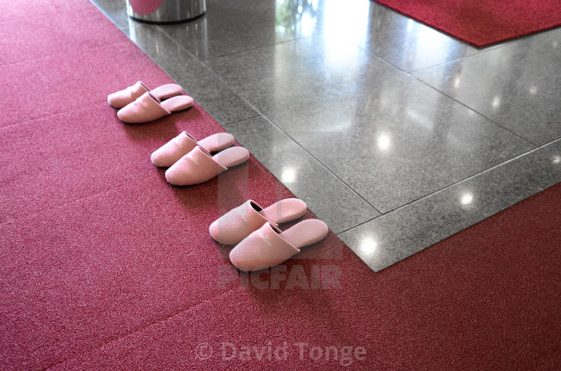 """Pink Slippers"" stock image"