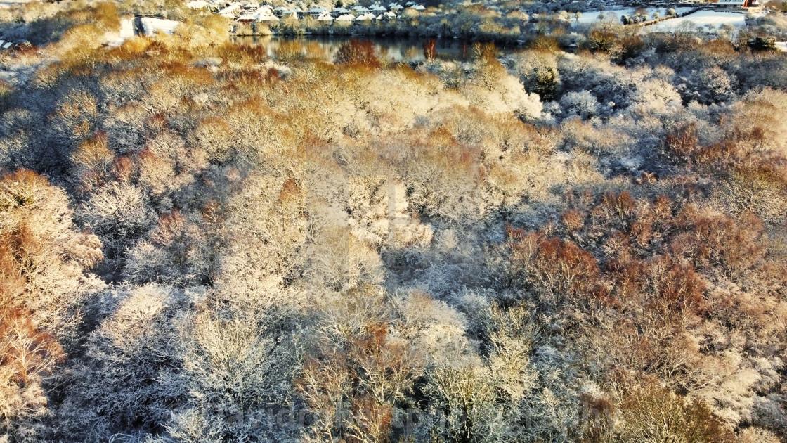 Saltwells Nature Reserve in Winter
