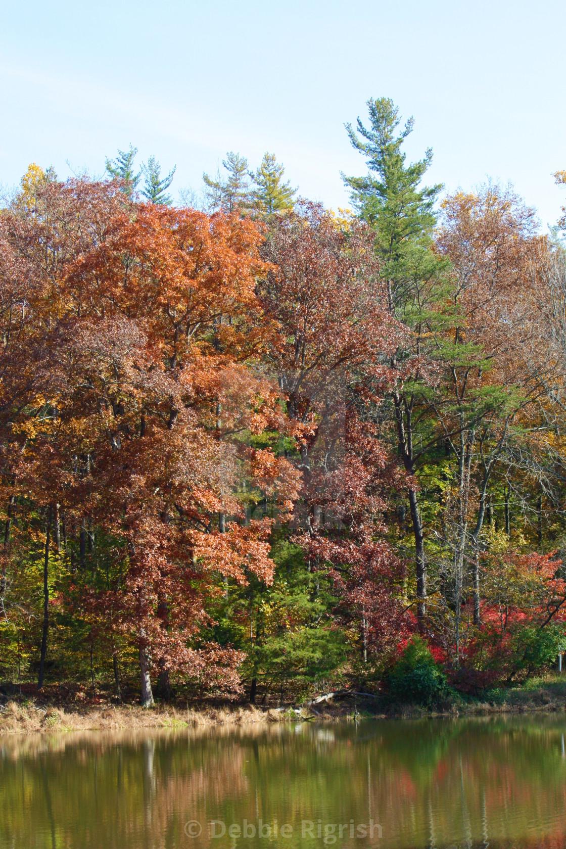 """Autumn Reflections No 2"" stock image"