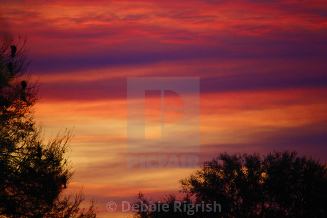 """""""Lake Okeechobee Sunset 5"""" stock image"""