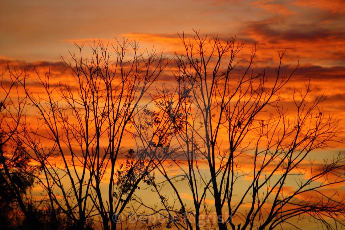 """""""Lake Okeechobee Sunset 2"""" stock image"""