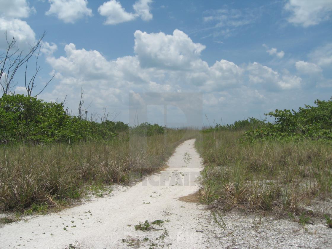 """Sandy Trail"" stock image"